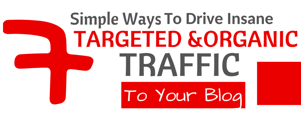 7 Simple Ways To Drive More Targeted, Organic Traffic To Your Blog (That Work Fast)
