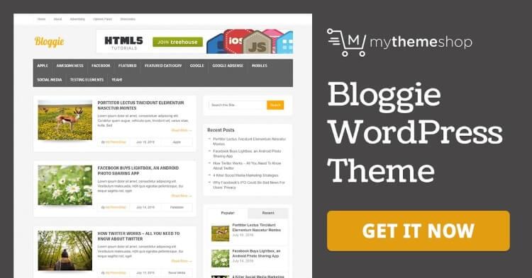 how to design a wordpress blog theme bloggie